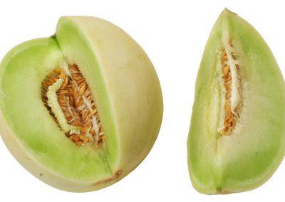 Honey-dew-melon