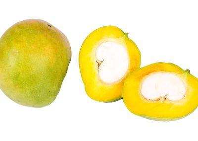 Mango Villard