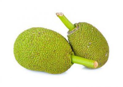 baby-jackfruit