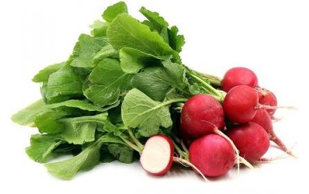 baby-red-radish