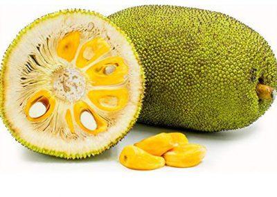jack-fruit-1